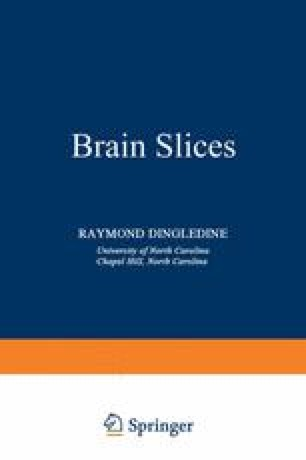 Brain Slices