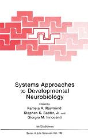 Systems Approaches to Developmental Neurobiology