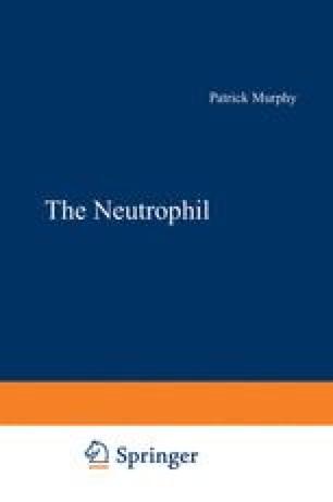 The Neutrophil