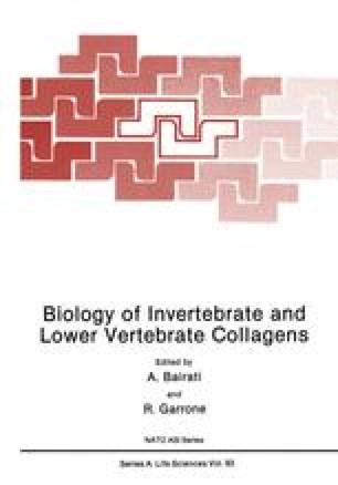 Biology of Invertebrate and Lower Vertebrate Collagens