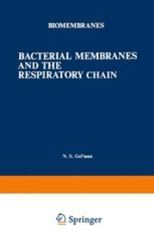 Bacterial Membranes and the Respiratory Chain