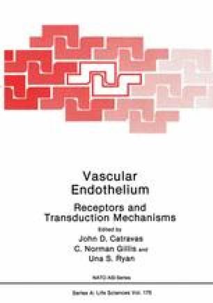 Vascular Endothelium