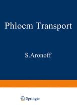 Phloem Transport