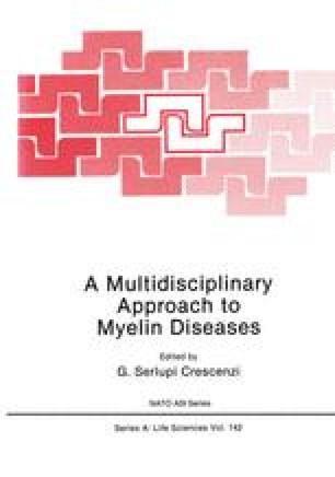 A Multidisciplinary Approach to Myelin Diseases