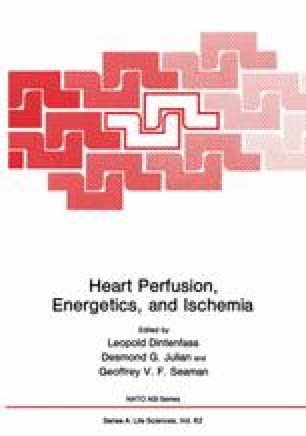 Heart Perfusion, Energetics, and Ischemia