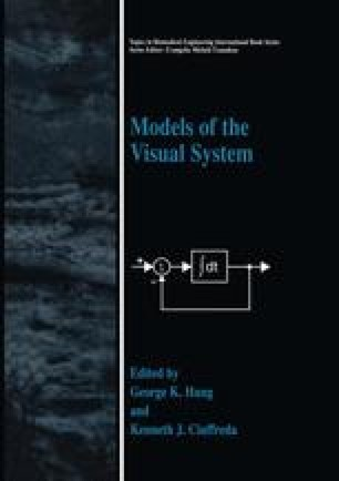 Models of the Visual System