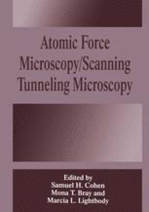 Atomic Force Microscopy/Scanning Tunneling Microscopy