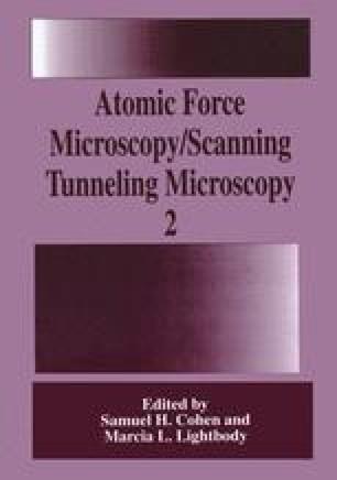 Atomic Force Microscopy/Scanning Tunneling Microscopy 2
