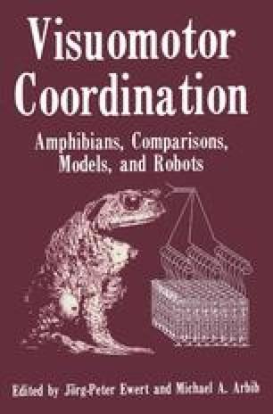 Visuomotor Coordination