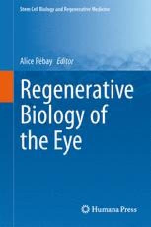 Regenerative Biology of the Eye