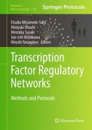 Transcription Factor Regulatory Networks