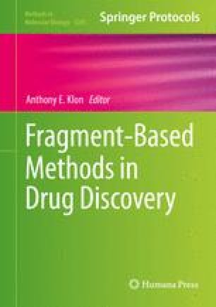 Fragment-Based Methods in Drug Discovery