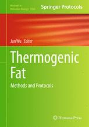 Thermogenic Fat