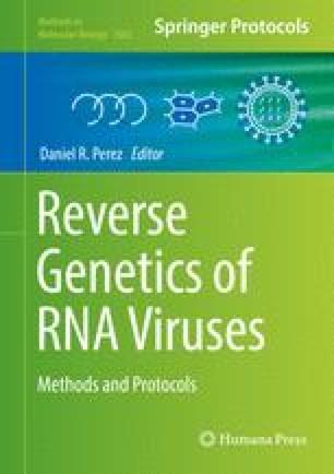 Reverse Genetics System for the Avian Coronavirus Infectious ...