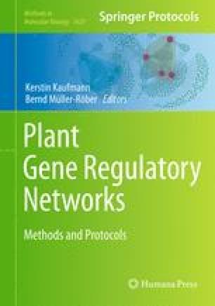 Plant Gene Regulatory Networks