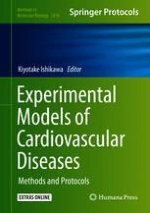 Experimental Models of Cardiovascular Diseases