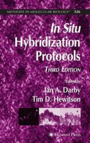 In Situ Hybridization Protocols
