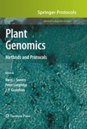 Plant Genomics