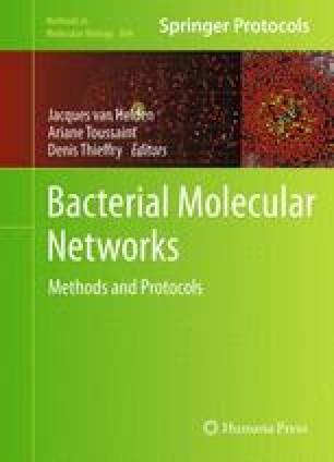 Bacterial Molecular Networks