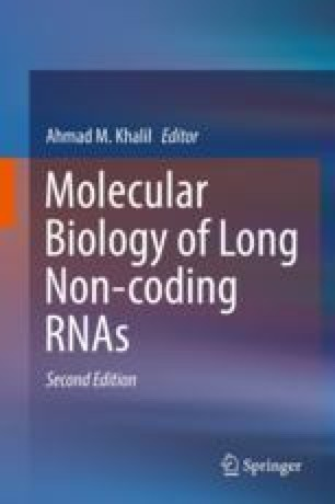 Chemical Modifications and Their Role in Long Non-coding