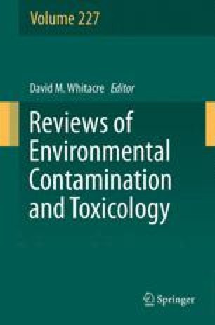 Occurrence, Degradation, and Effect of Polymer-Based