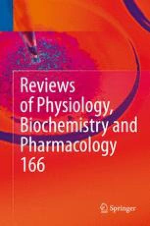 Human Immunodeficiency Virus Reverse Transcriptase: A Bench