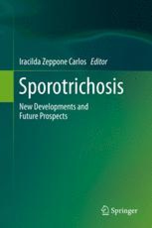 Esporotricosis Ebook