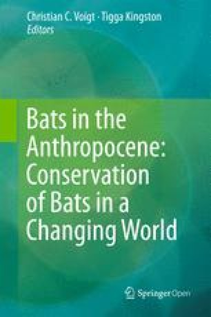 The Roles of Taxonomy and Systematics in Bat Conservation
