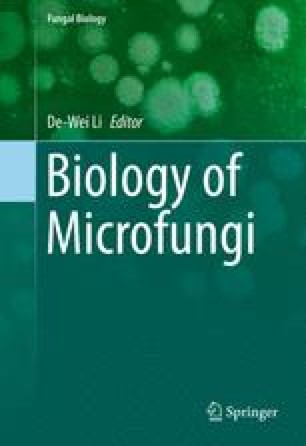 Dispersal strategies of microfungi springerlink fandeluxe Image collections