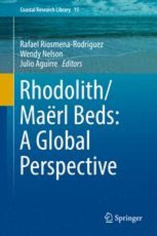Rhodolith/Maërl Beds: A Global Perspective