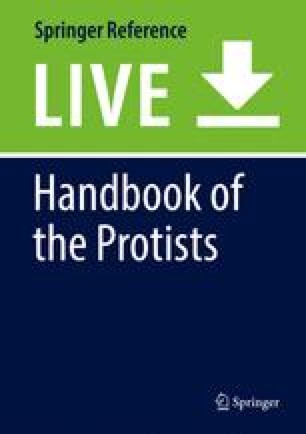 Handbook of the Protists