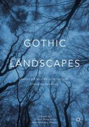 Gothic Landscapes in Mary Butts's Ashe of Rings   SpringerLink