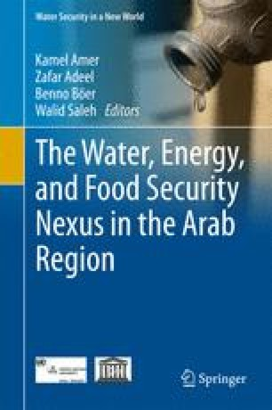 Water-Energy-Food Security Nexus in the Arab Region: Thoughts and