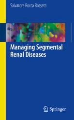 Managing Segmental Renal Diseases