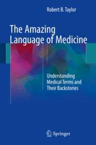 Medical Metaphor, Simile, and Onomatopoeia | SpringerLink