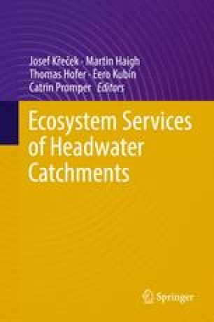 Ecosystem Services of Headwater Catchments