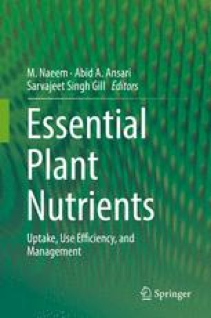 Improving Plant Phosphorus (P) Acquisition by Phosphate ...
