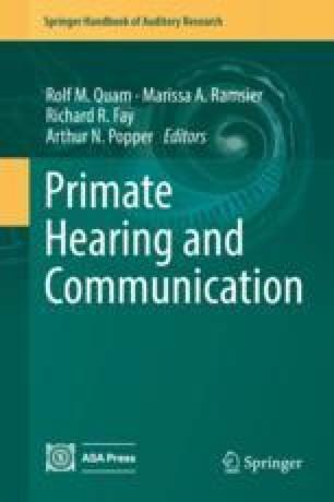 A Primer on Communication Studies