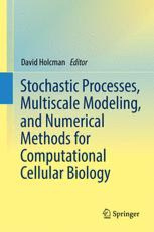 Stochastic Processes, Multiscale Modeling, and Numerical Methods for Computational Cellular Biology