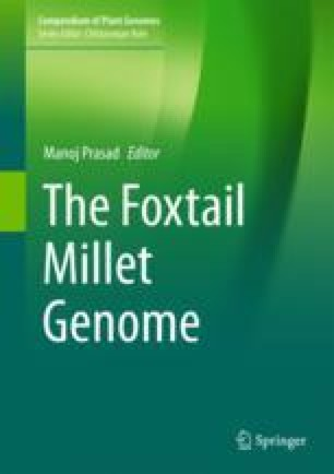 Nutrition Potential of Foxtail Millet in Comparison to Other