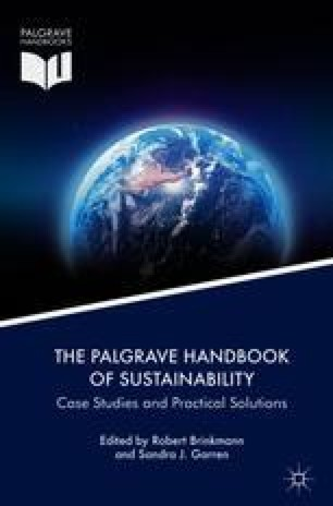 African Sustainability and Global Governance | SpringerLink