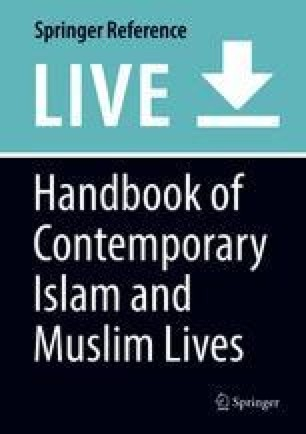 Experience of Muslims in South Africa | SpringerLink