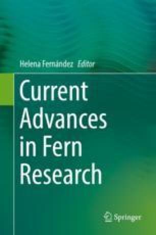 Current Advances in Fern Research