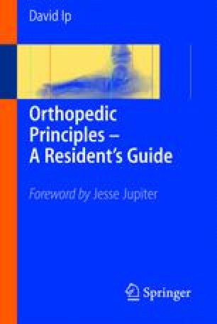 Orthopaedic Basic Science Book