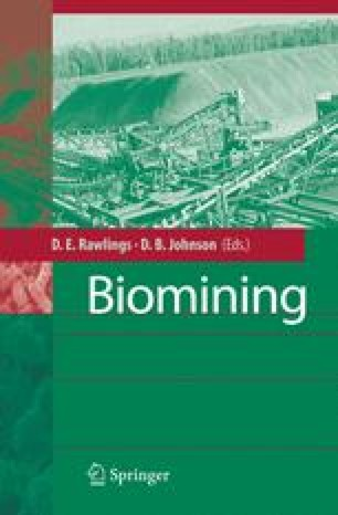 biohydrometallurgy and the environment toward the mining of the 21st century amils r ballester a