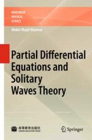 One Dimensional Wave Equation | SpringerLink