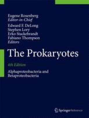 The Family Rhodospirillaceae | SpringerLink