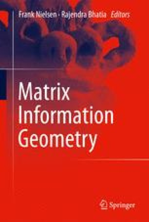 Matrix Information Geometry