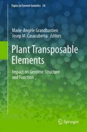 Plant Transposable Elements