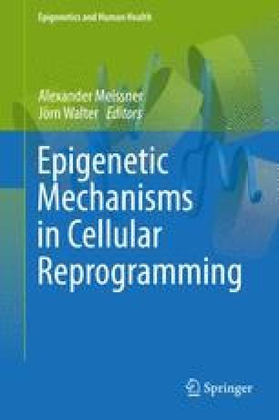 Epigenetic Mechanisms in Cellular Reprogramming